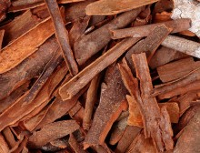 Cinnamon Bark P. E. Support for Blood Sugar Metabolism
