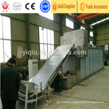 Dw Mesh Belt Dryer for Flesh Vegetable
