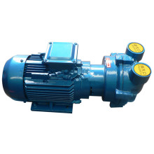 2BV+series+explosion-proof+water+ring+vacuum+pump