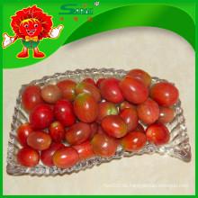 Organische rote Kirschtomaten Melone und Obst Gemüse