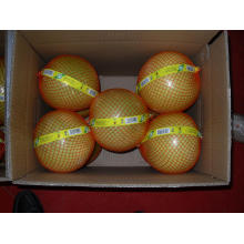 Mel Pomelo Fresh New Crop