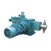 Good Quality for Small Plunger Metering Pumps Plunger-metering pump export to Kuwait Factory