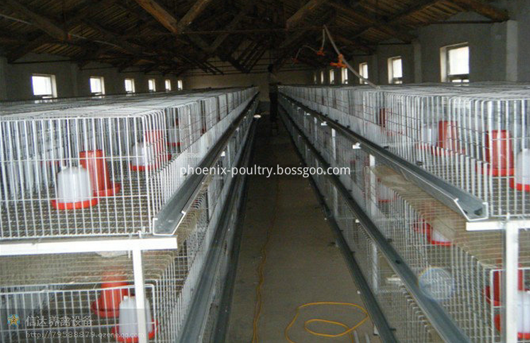 Poultry cage drinking system