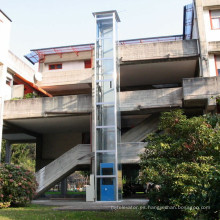 Villa personal que levanta la casa residencial Home Pasajero Antique Elevators