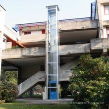 Casa de campo pessoal que levanta elevadores residenciais da antiguidade do passageiro da casa residencial