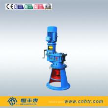 Mezclador reductor con agitador vertical serie Lpy con eje paralelo