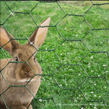 chicken wire mesh rabbit fence green PVC coat steel garden netting