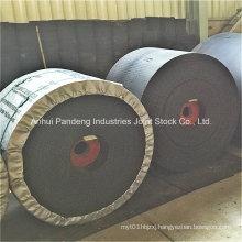 Conveyor Belt/Nylon Conveyor Belt with Flame Resistance/Conveyor Belt Manufacturer