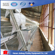 China Manufacturer Low Cost Full Automatic Chicken Raising Equipment