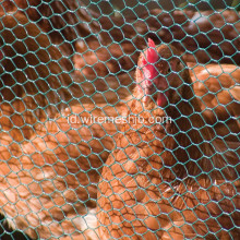 PVC Coated Chicken Livestock Wire