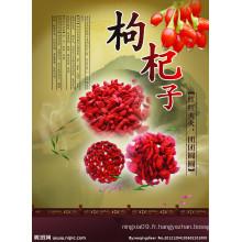 Goji Berry pour échantillon gratuit