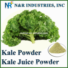 Powder Form Kale Powder 80 to 200mesh and Steam Sterilization and Supply other vegetable Powders