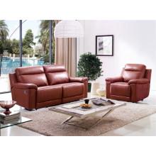 Sala sofá de cuero genuino (D907)