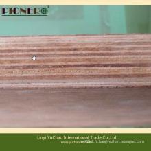 Sciage de contreplaqué à base de bois dur tropicale pour le revêtement de conteneurs