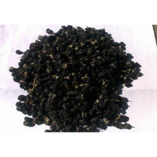 wholesale natural organic black goji berry plant young Seeds