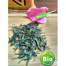 Chá verde de orgânico