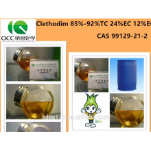 Production directe en usine Agrochimique / Herbicide Clethodim 85% -92% TC 24% EC 12% CE CAS 99129-21-2