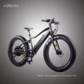 48V1000W Bafang Mid Drive neues Design Fett elektrisches Fahrrad mit versteckter Batterie