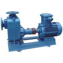 Strong Self-Priming Pump (ZX)