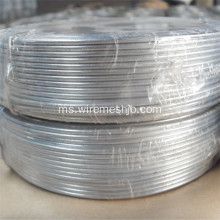 Pembungkusan Kecil Wire Electro Galvanized Soft Iron Wire