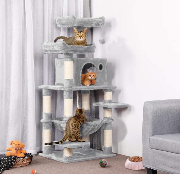 Kitty Tree Condo