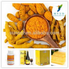 Additives Turmeric Curcumin As Raw Material for Food and Beverage Turmeric Root Extract