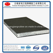 2015 Chinese Whole Core Flame Retardant Conveyor Belt for Sale