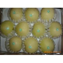 Köstliche süße goldene Birne der hohen Qualität