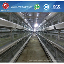 New Farm House Design Poultry Chicken Broiler Battery Cage