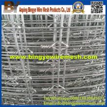 Fábrica de ISO Galvanizada Pasto Durable Closed Fence