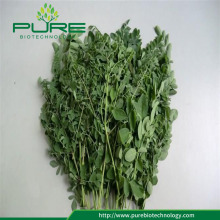 Buy Dried Moringa leaves