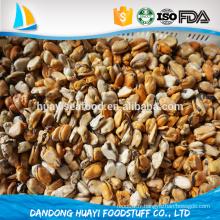 Superbe qualité sable à la viande fraîche de moules congelées bon prix