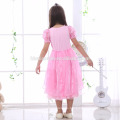 Aurora princess dress in girl's dress pink color princess cosplay pretty princess dress