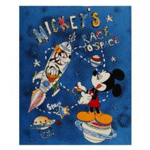 Raça polar de Mickey's Cobertor De Lã