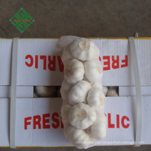 top new crop fresh natural pure white garlic supplier