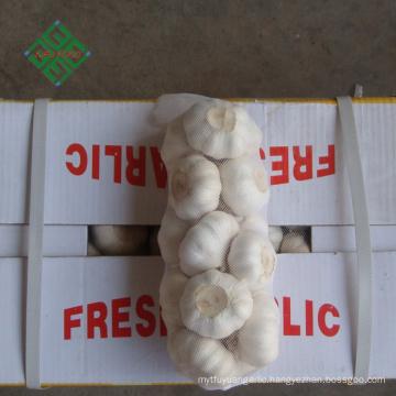 top new crop fresh natural pure white garlic supplier