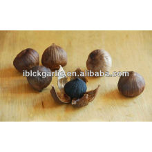 2016 Magic Single Black Garlic
