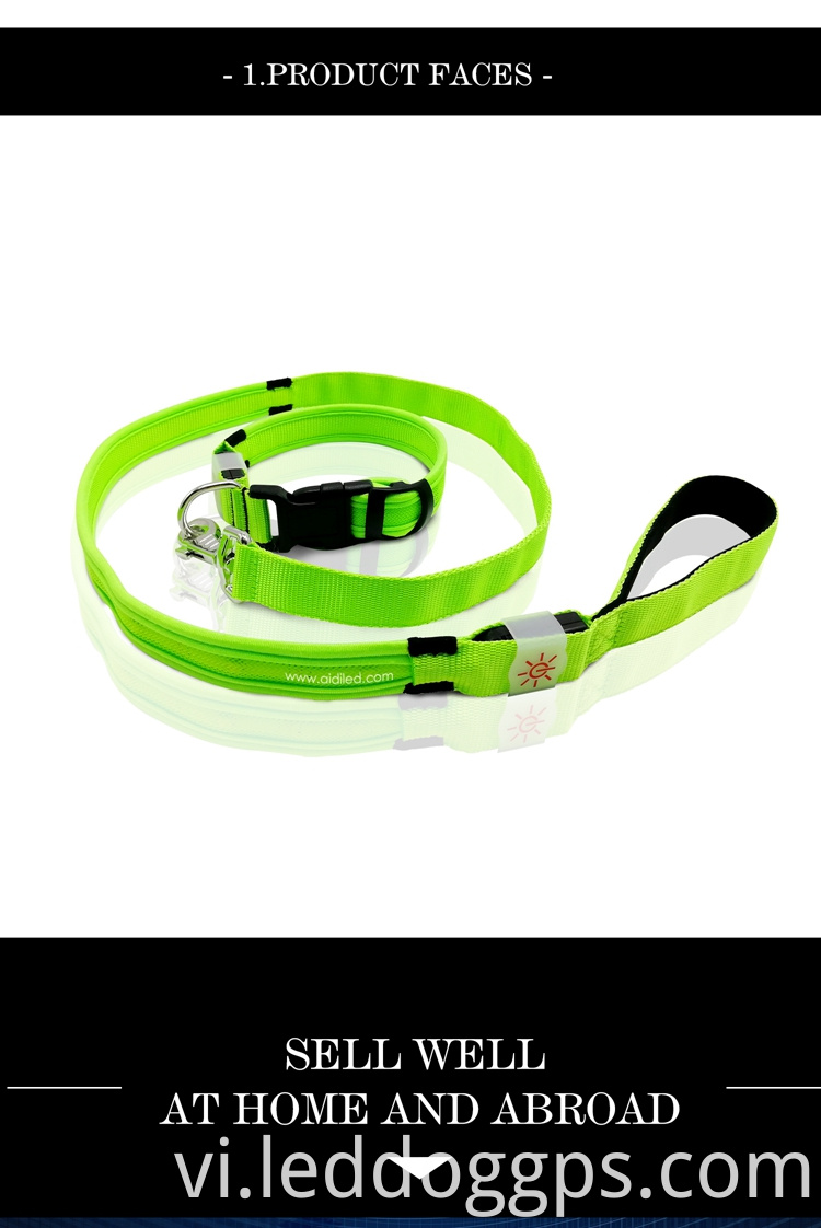 Rgb Led Dog Leash