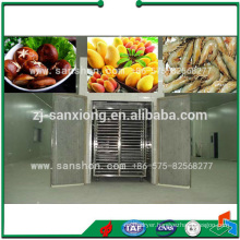China Vegetable Fruit Tunnel Dryer