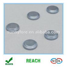 zinc coating motor step magnet