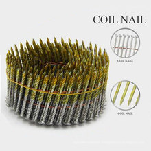 Factory Supply Eg Ring Shank Coil Nails with Nice Price