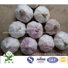 Свежий обычный белый чеснок Jinxiang Hongsheng чеснок продукт компании