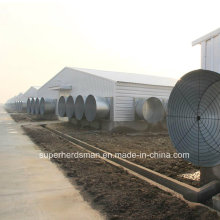 Leichtes Stahlstruktur-Geflügel-Haus für Morder-landwirtschaftliche Maschinen