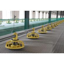 Broiler Automatisches Fütterungssystem