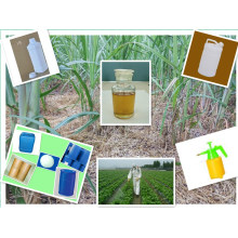 Herbicida Weedcide ervas daninhas Folhas Gramas Controle de ervas daninhas 34256-82-1 Acetechlor