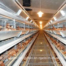 Equipamento de gaiola para aves de capoeira automático para frangos de carne