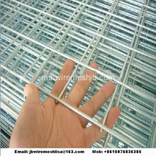 Wire Mesh Galvanized Wire Hot-dip Panel