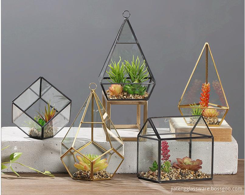 Glass Plant Terrarium