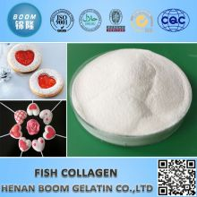 collagen powder in sachet