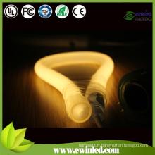 (360 Round) LED Neon Tube avec des broches relient le fil de puissance / néon